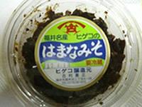 Hamanamiso01